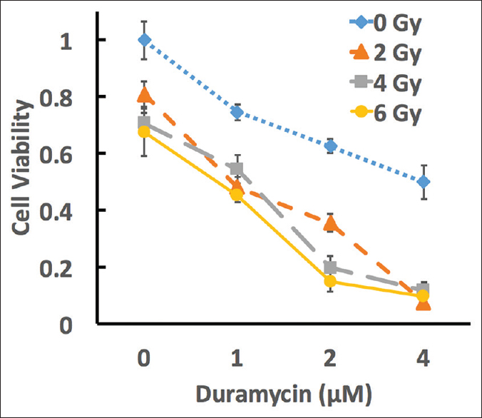 Figure 2: Effect of duramycin and radiation on the cell viability of MCA-RH 7777 at 48 h of following treatment. Cells were treated with four concentrations of duramycin for 4 h and then irradiated with four dose levels