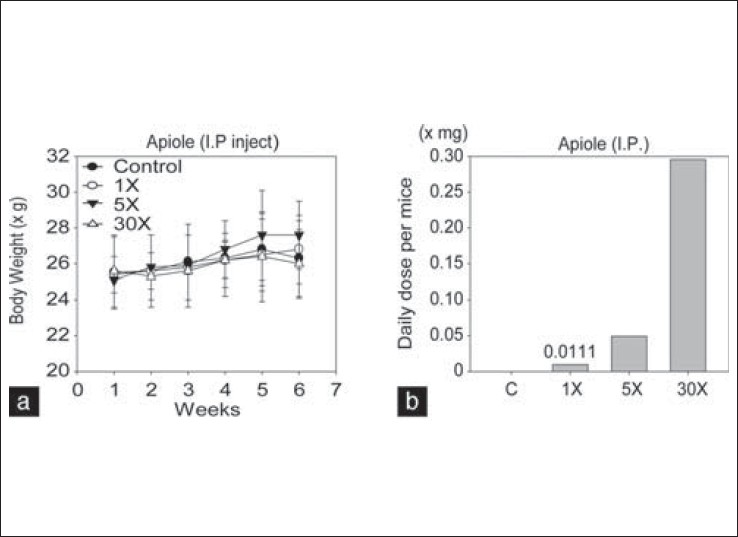 Figure 2: The dose-dependent effects of apiole on body weight changes after daily administration to COLO-205-bearing mice. (a) The mice were I.P. injected with apiole at 1, 5, or 30 mg/kg body weight three times per week. (b) The average mouse body weight was 26 g. The mice were maintained on 5 g of Lab Diet per day. The daily dose of apiole in the 1× dose group was 0.0111 mg per mouse. The values represent the means ±nS.E