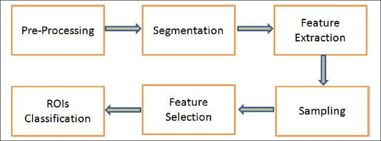 Figure 1: Block diagram of the proposed mass detection algorithm