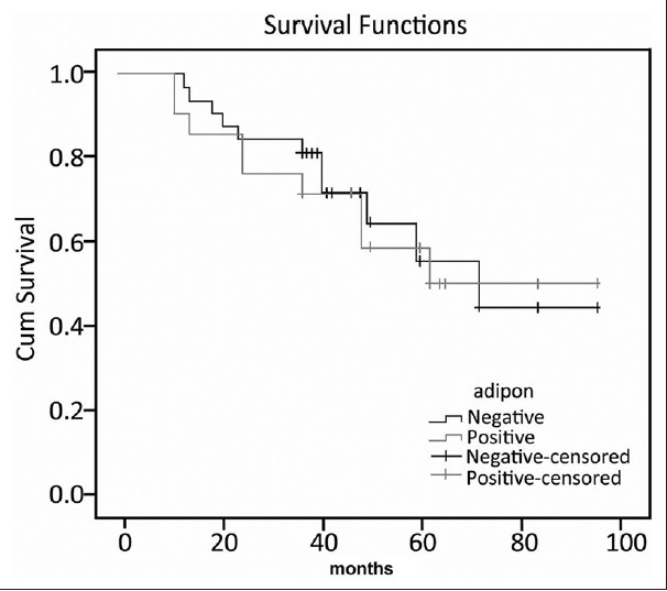 Figure 1: Overall survival curves for adiponectin expression (*adipon:adiponectin)