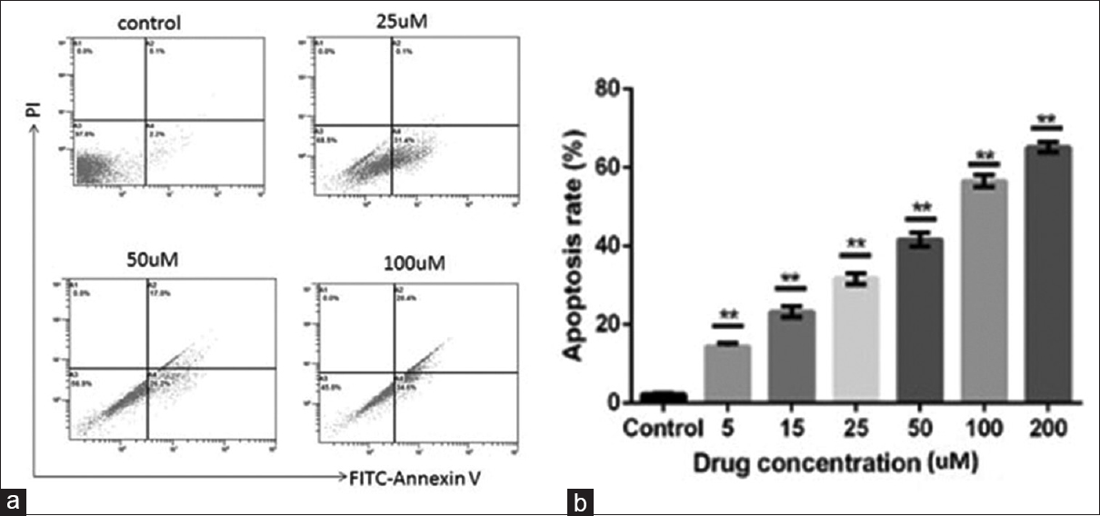 Ganodermanontriol inhibits expression of special AT rich sequence