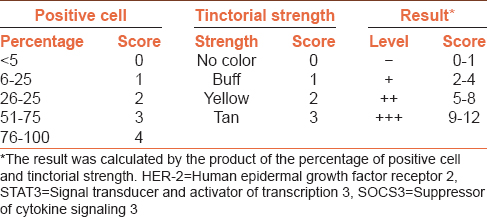 Table 1: Scoring standard of immunohistochemical staining result of HER-2, STAT3 and SOCS3
