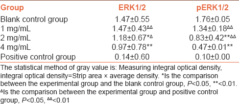Table 3: ERK1/2 and pERK1/2 protein