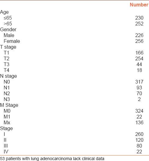 Table 1: Clinical characteristics of 482 lung adenocarcinoma patients derived from the Cancer Genome Atlas database